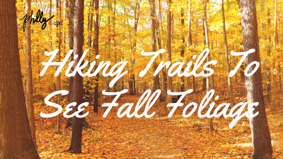 hiking-trails-to-see-fall-foliage